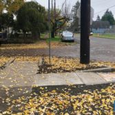 Kelso Safe Routes to School : After photo