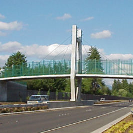 Padden Parkway - Project Photo